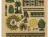 Mešita s minaretem - Kohout - 58/1