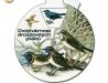Dvojtvárnost drozdovitých ptáků