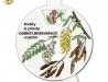 Květy a plody našich jedovatých rostlin